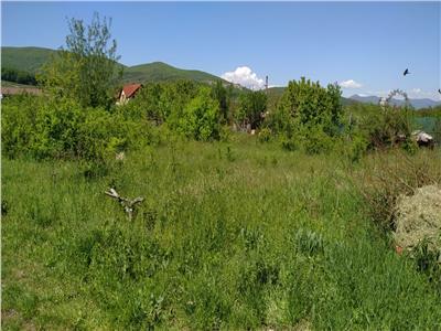 Teren Alba Micesti ,partea stanga 450 mp